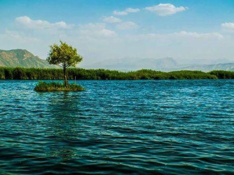 دریاچه زریبار مریوان کردستان
