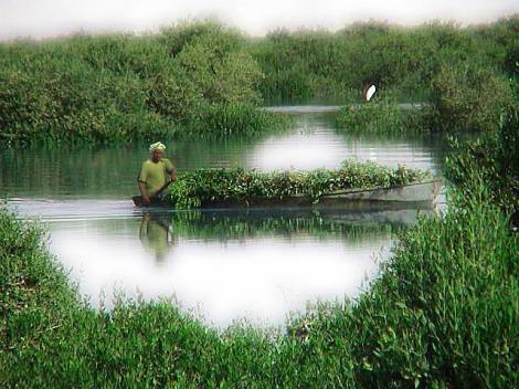 خلیج گواتر- رودخانه باهوکلات
