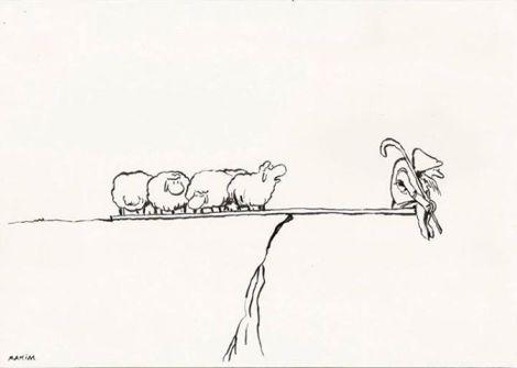گوسفندا2