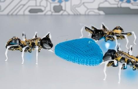 bionic-ant 1