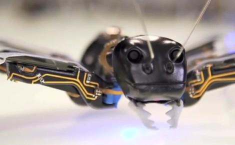 bionic ant2