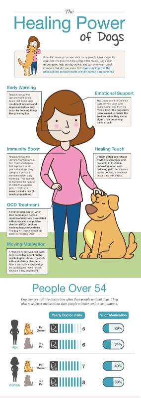 healing-dogs